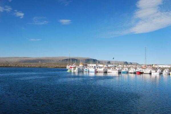 Gedränge im Hafen von Patreksfjördur