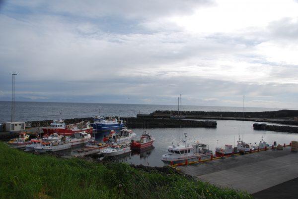 Grimsey Hafen 2