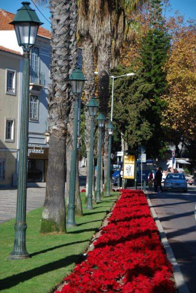 Grün- und Rotstreifen