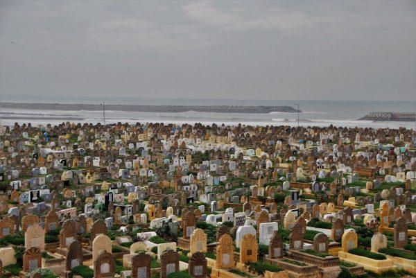 Friedhof vor Hafeneinfahrt