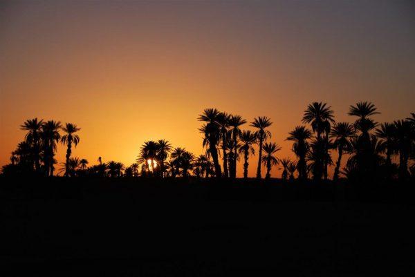 erster Abend in der Wüste