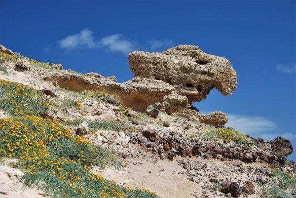 skuriler Sandstein