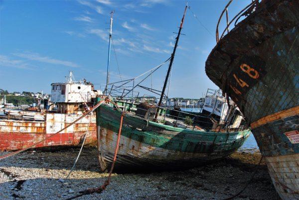 Strandgut am Hafen 1