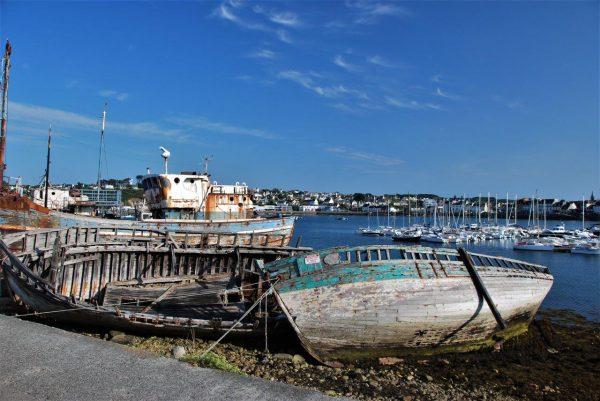 Strandgut am Hafen 2