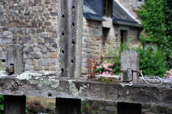 altes Mühlenwehr 2